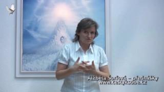 Alžběta Šorfová, Léčení rodových kořenů