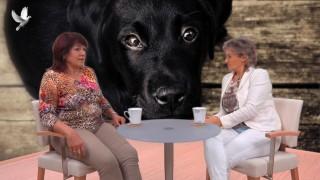 Danuše Herpe Jungmanová, Množírny – psí koncentrák