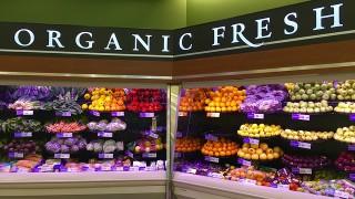 ŠOKUJÍCÍ STUDIE: GMO potraviny způsobují dětem nenávratné poškození organismu