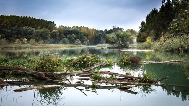 Hladiny řek v Povodí Moravy jsou hluboko pod průměrem