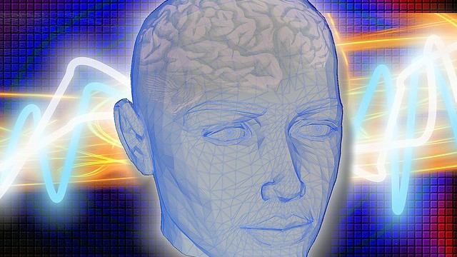 Co jste nevěděli, že dokáže váš mozek