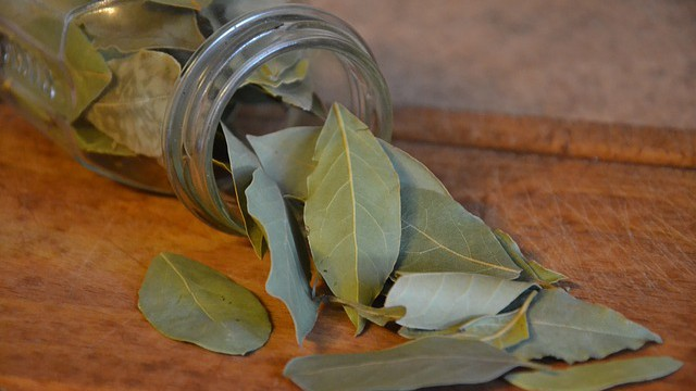 Chcete se zbavit stresu, tak spalte bobkový list