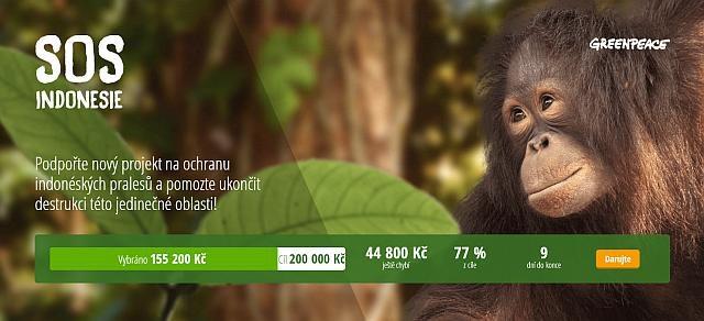 Přísně tajné: naděje pro indonéské pralesy
