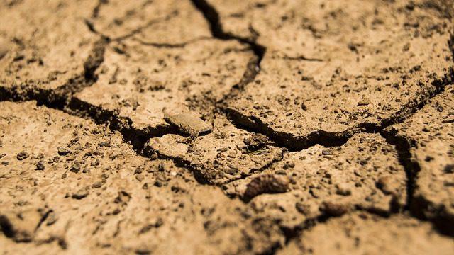 Sucho z klimatické změny? Na Česko už začíná doléhat, varuje profesor Žalud