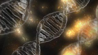 12 000 let stará neznámá DNK