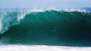 Podepište výzvu za ochranu oceánů