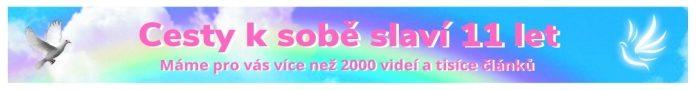 Slavime 11 Let700x90