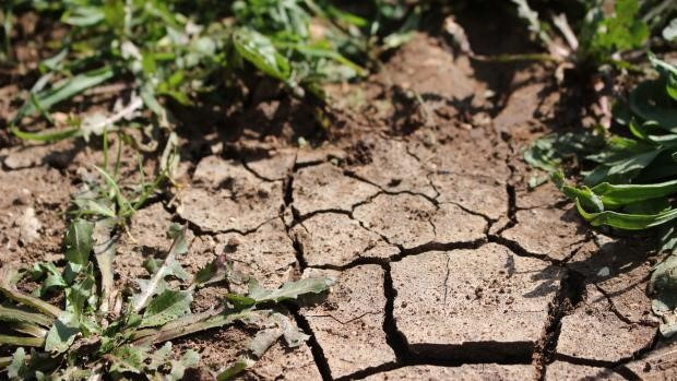 Největší obavy stále panují ze sucha (ilustrační foto) | Zdroj: Fotobanka Pixabay
